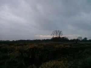160112 045 Schuytgraaf Arnhem-Zuid