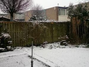 160214 223 sneeuw in de tuin