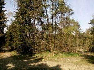 160502 147 Schaarsbergen