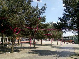 160507 166 roze stationsplein