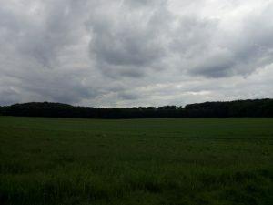160531 309 Schaarsbergen - Warnsborn