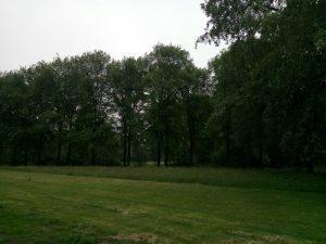 160602 322 Matenpark 07.30
