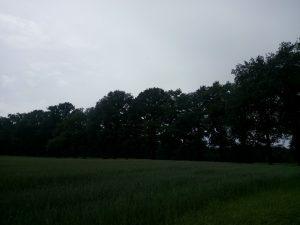 160615 425 Schaarsbergen Warnsborn