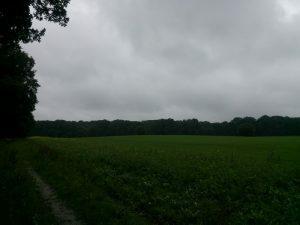 160621 268 Schaarsbergen Warnsborn