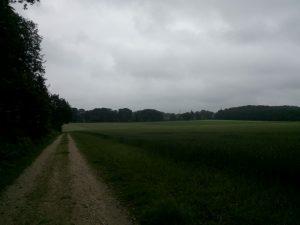 160621 271 Schaarsbergen Warnsborn