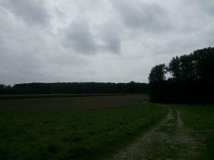 160804 118 Schaarsbergen Warnsborn