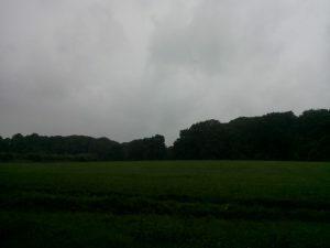 160811 146 Schaarsbergen Warnsborn