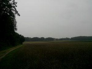 160811 149 Schaarsbergen Warnsborn