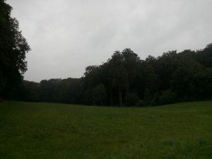 160811 150 Schaarsbergen Warnsborn