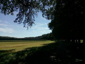 160823 293 Schaarsbergen Warnsborn