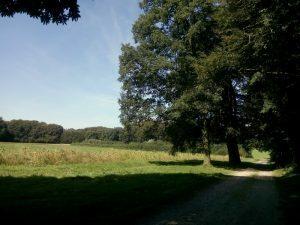 160830 345 Schaarsbergen Warnsborn