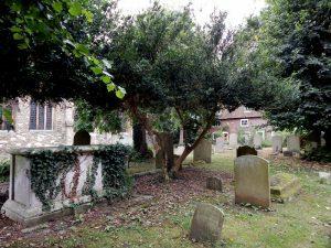 157 St. Mary's Church