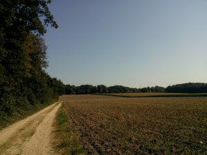 160913 395 Schaarsbergen Warnsborn