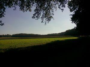 160927 483 Schaarsbergen Warnsborn