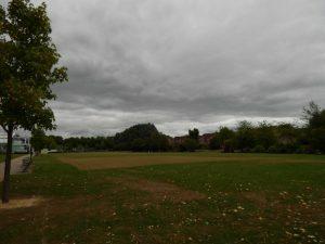 194 Vale Park