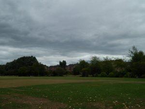 195 Vale Park