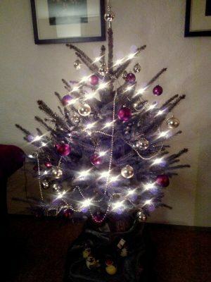 161211-456-kerstboom-staat