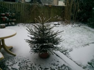 170107-034-witte-kerst